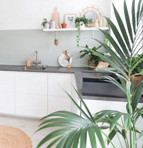 Open Keuken Planten